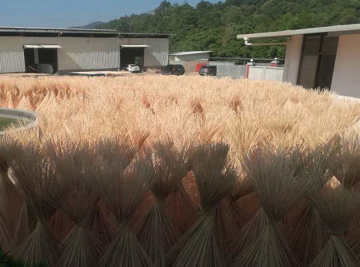竹签晾晒场